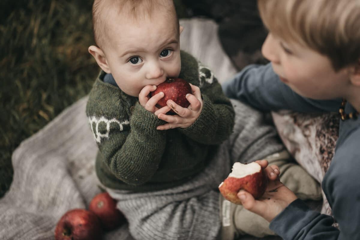 æble-fotograf-børnefotograf-aarhus